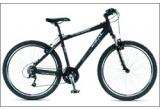 o bicicleta performanta IDEAL