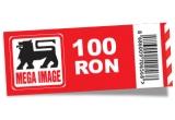 un bon de cumparaturi in valoare de 100 de ron / zi