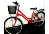 o bicicleta / zi