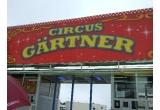 10 x bilet la Circul Gartner