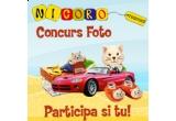 3 x premii oferite de Nicoro Trading