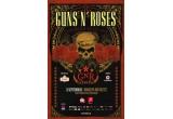 un bilet la concertul Guns N' Roses / zi