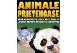 """6 x cartea """"Cartea cu masti: Animale prietenoase"""""""