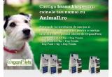 3 x hrana bio pentru cainele tau
