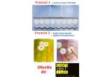 lustra Luxor 8 brate, aplica Dmuchawce + aplica Rumianek