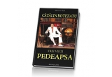 """cartea Catalin Botezatu """"3 vieti. Pedeapsa"""""""
