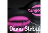o sedinta la Kangoo Aerobic / saptamana