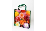 "1 x pachet promotional ""Dahlia Shopping Bag"" + pachet promotional ""Elegant Beauty"" + un bujor Sorbet + 3 buc. Canna ""Rosemond Coles"" + 3 buc. Cala ""Golden Star"" + 10 buc. gladiola Jester, 1 x pachet promotional ""Dahlia Shopping Bag"" + pachet promotional ""Elegant Beauty"", 1 x pachet promotional ""Dahlia Shopping Bag"""