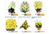 voucher de 100 RON pe floria.ro