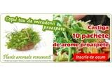 10 x pachet cu 3 ghiveci de plante aromatice