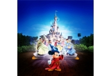 30 x bilet de intrare in parcul Disneyland