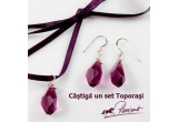 2 x set Toporasi oferit de Ravisant