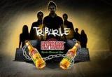 8 x invitatie VIP la petrecere Desperados, 1 x invitatie VIP la ultima petrecere Desperados, 120 x bax de 24 de sticle cu bere Desperados