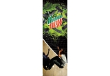 2 x skateboard