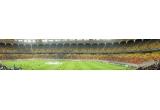 1 x bilet pentru 2 persoane la meciul Otelul Galati – Manchester United