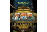 """1 x 2 DVD-uri - """"Armasarul campion"""" si """"Life Aquatic with Steve Zissou"""""""