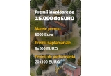 1 x 5000 EURO, 8 x 500 EURO, 20 x 100 EURO