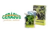 10 x set 3 produse Pulbere organica din ovaz verde