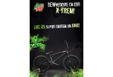1 x Bicicleta WTP ARCADE 2012