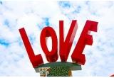 1 x Lenjerie de pat 2 pers Hearts, 1 x lLenjerie de pat 2 pers Love Rosie, 1 x Forme pentru ochiuri Inima