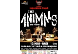 2 x invitatie simpla la concert The Animals la Iasi