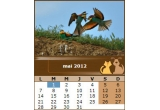 1 x loc in calendarul site-ului e-pets.ro in luna Iunie 2012