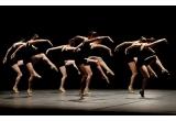 "1 x invitatie dubla la spectacolul ""Seara de balet!"" la ONB"