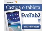 1 x tableta EvoaTab 2
