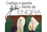 1 x geanta Giuka oferita de ENDRA.ro