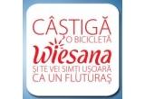 12 x bicicleta Wiesana