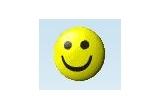 un tricou smileyface, un pachet de carti de joc smileyface sau un cd cu pozele din concurs