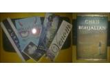 "1 x cartea ""The Sandcastle girls"" + un pachet format din 5 swaguri"