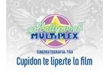 Difuzarea filmuletului la Hollywood Multiplex<br type=&quot;_moz&quot; />
