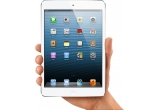 1 x Apple Ipad Mini
