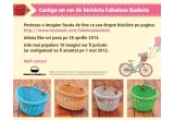 1 x cos de bicicleta Fabulous Baskets