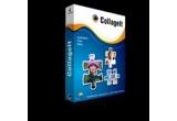 20 x licența a programului CollageIt Pro