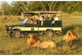 1 x excursie in Kenya pentru 2 persoane (transport cu avionul + cazare + safari in parcuri de animale + ghid turistic), zilnic: premii pentru safari constand in palarii de soare/monoculare/lanterne/busole/borsete/termosuri/dispozitive speciale pentru apa sau lichide (65 premii)