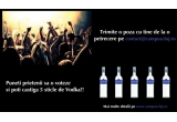 1 x 5 sticle de vodka Discovery