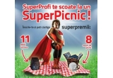 11 x geanta termica, 8 x cos de picnic complet echipate