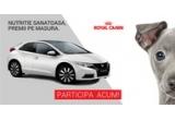 1 x masina Honda Civic, 4 x smartphone Lumia 830, 62 x hrana pentru o luna Royal Canin, garantat: medalion pentru caine personalizat
