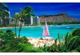 1 x excursie in Honolulu + bani de cheltuiala