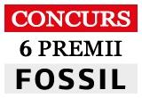 2 x pereche de cercei Fossil, 2 x bratara Fossil, 2 x lant cu pandant Fossil