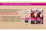 30 x 2 cutii de vopsea din gama Palette Perfect Care Color