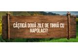 1 x excursie de 4 persoane la pensiunea Cabana Motilor din Marisel Cluj
