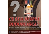 18 x sticla de vin de 750 ml din Gama Budureasca Premium