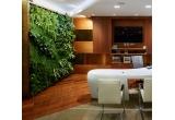 42.000 x tavita de gheata din silicon Strongbow®, 8 x ceas Noah Strongbow®, 1 x proiect gradina interioara