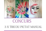 3 x tricou unicat pictat manual