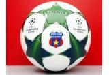 <p> o minge de fotbal<br /> </p>