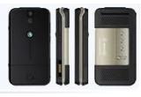 <p> un telefon mobil Sony-Ericsson R306<br /> </p>