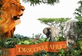 O excursie pentru doua persoane in Africa<br type=&quot;_moz&quot; />